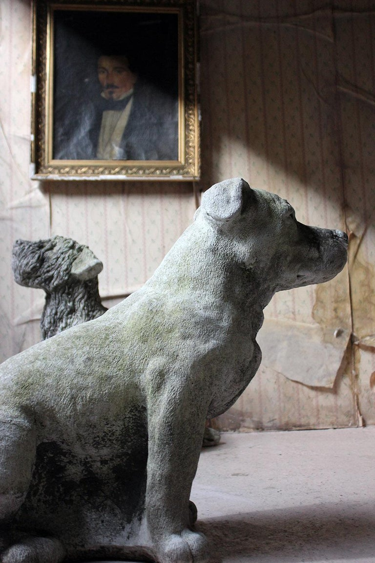 English Mid-20th Century Cast Composition Stone Staffordshire Bull Mastiff For Sale