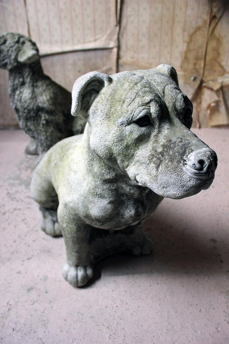 Mid-20th Century Cast Composition Stone Staffordshire Bull Mastiff In Good Condition For Sale In Bedford, Bedfordshire