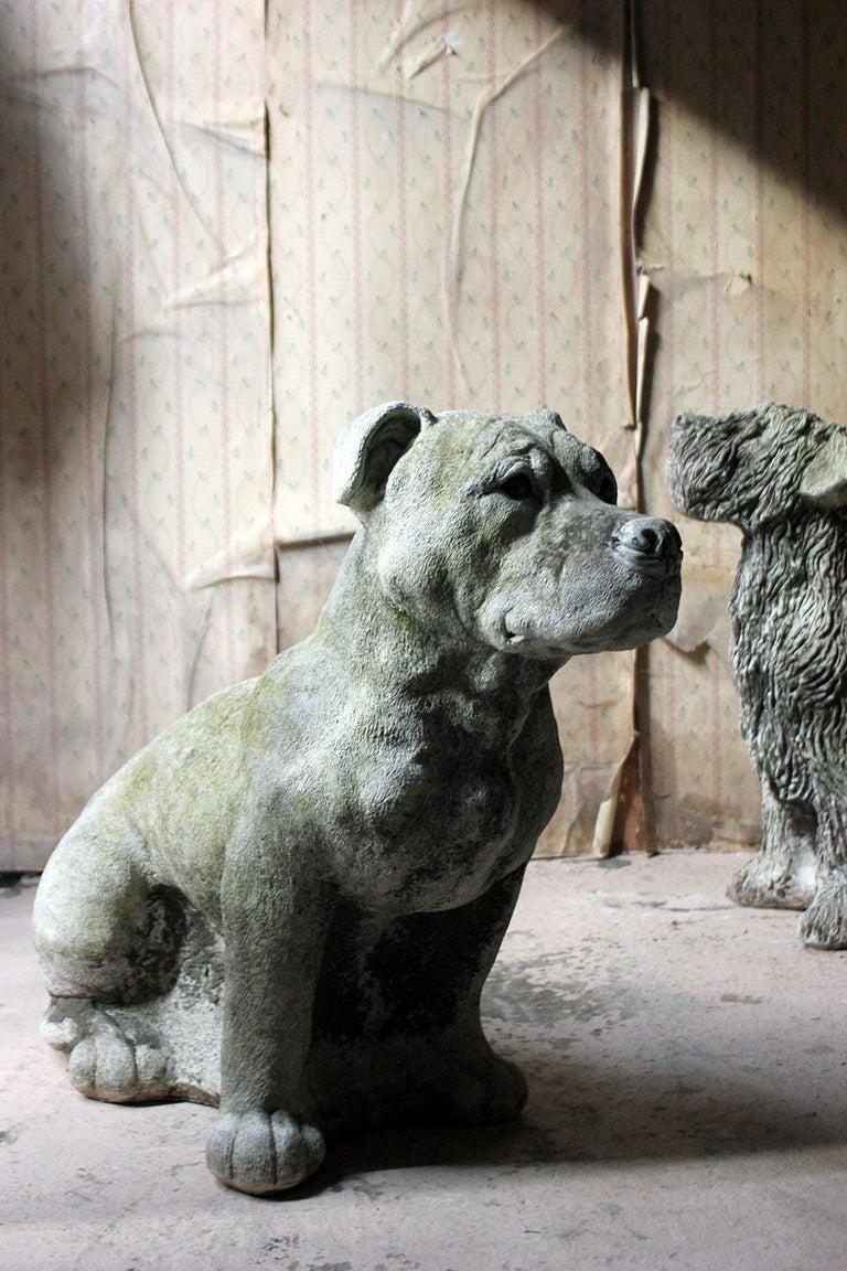 Mid-20th Century Cast Composition Stone Staffordshire Bull Mastiff For Sale 1