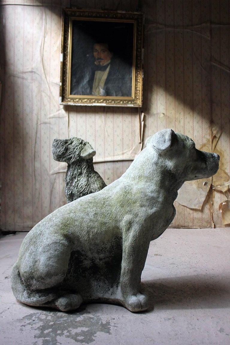 Mid-20th Century Cast Composition Stone Staffordshire Bull Mastiff For Sale 2