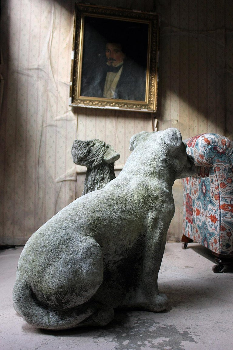 Mid-20th Century Cast Composition Stone Staffordshire Bull Mastiff For Sale 3