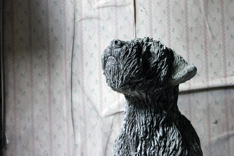 The very well modelled and large life-size cast stone wheaten terrier, in sitting position with the head tilted upward in obedience, having a closed mouth, the eyes clear of the notorious shaggy hair, the whole of hyper-real form and surviving from