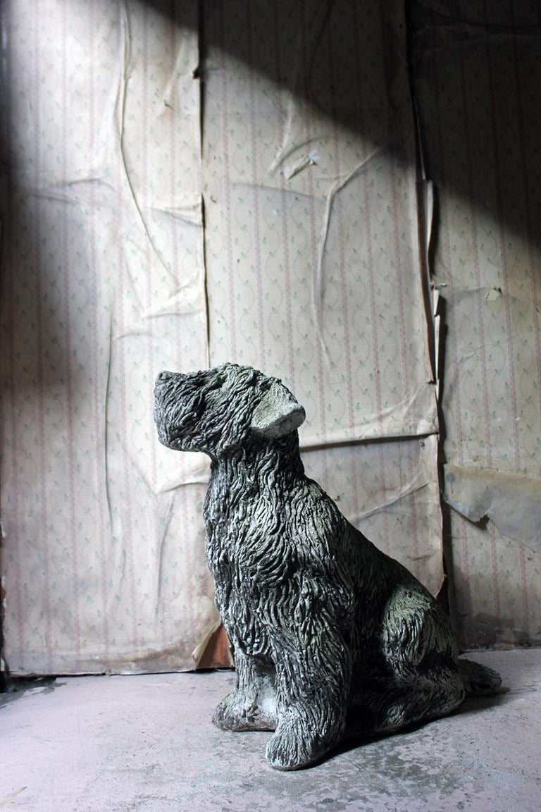Mid-20th Century Cast Composition Stone Wheaten Terrier For Sale 3