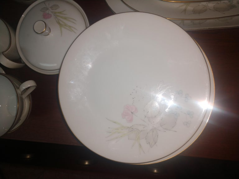 Mid Century 99 Piece Set of Porcelain China Rosenthal Parisian Spring Germany For Sale 2