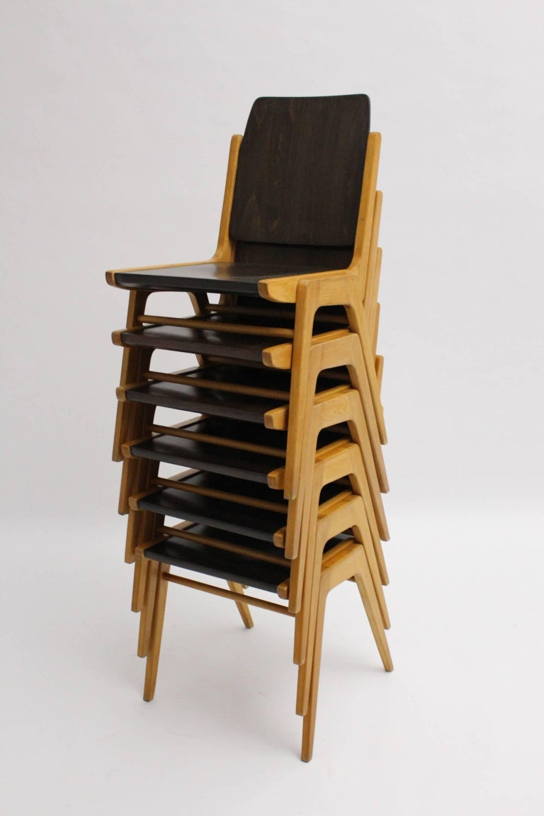 Stained Midcentury Brown Beech Dining Room Chairs Franz Schuster Vienna 1959, Set of Six For Sale