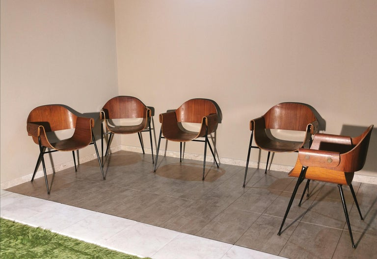 Set of 6 rare chairs with armrests by Carlo Ratti in curved wood with brass accessories and black enamelled metal structure. Italian production of the 1950s.