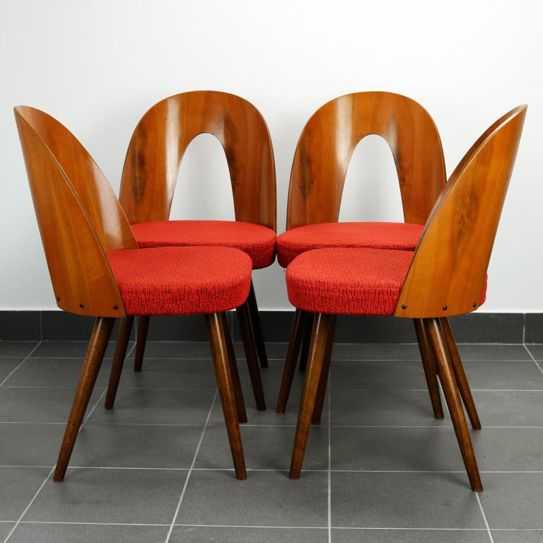 These chairs were designed by Antonin Suman, and were manufactured by the Tatra Nabytok Company, in the 1960s, in Czechoslovakia. Their red original fabric is still in perfect condition.