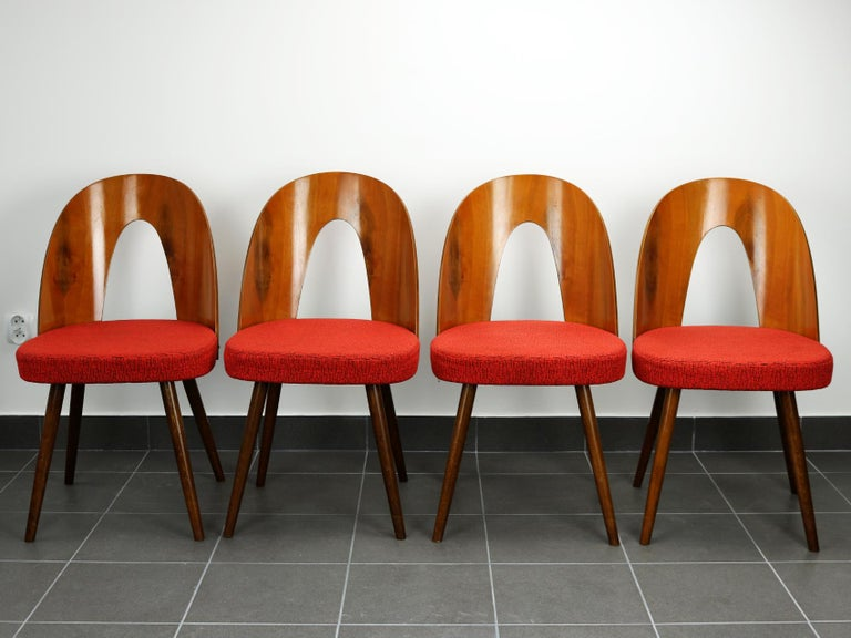 Mid Century Dining Chairs by Antonín Šuman for Tatra Nabytok Np, 1960s In Good Condition In Lucenec, SK