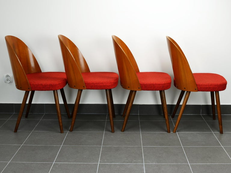 Mid-20th Century Mid Century Dining Chairs by Antonín Šuman for Tatra Nabytok Np, 1960s