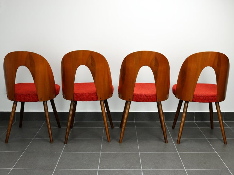 Plywood Mid Century Dining Chairs by Antonín Šuman for Tatra Nabytok Np, 1960s