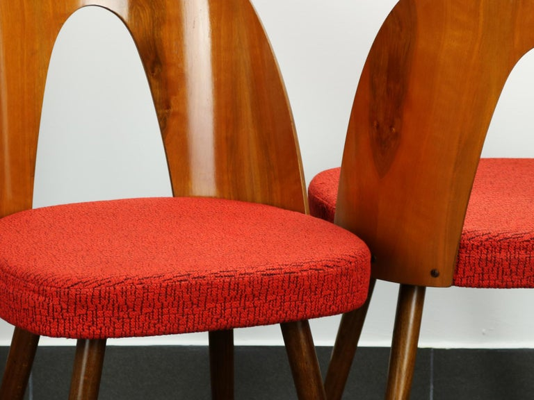 Mid Century Dining Chairs by Antonín Šuman for Tatra Nabytok Np, 1960s 1