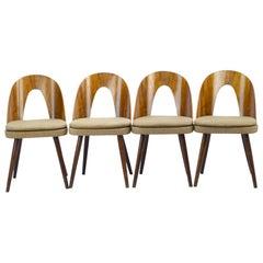 Midcentury Dining Chairs by Antonín Šuman for Tatra Nabytok Np, 1960s