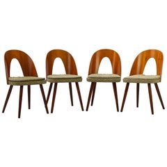Midcentury Dining Chairs by Antonín Šuman for Tatra Nabytok Np, 1960s