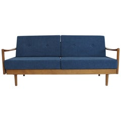 Midcentury Extendable Sofa Daybed by Wilhelm Knoll for Knoll Antimott, 1950s