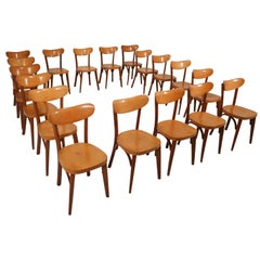 Midcentury French Set of 20 Bistro or Cafe Wooden Chairs, 1950s