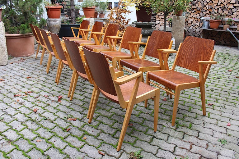 This presented set of 12 bicolor beech vintage armchairs / dining chairs designed by Franz Schuster for the well known producer Wiesner - Hager 1959 Vienna.