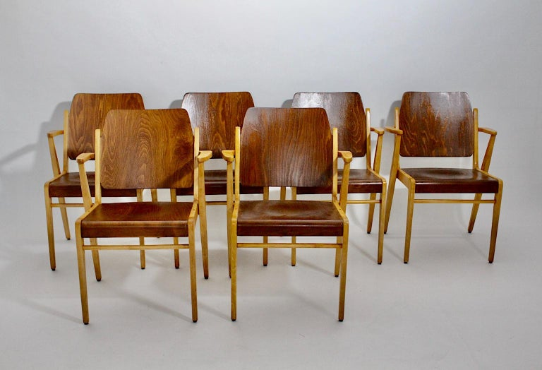 Mid-Century Modern 12 Vintage Bicolor Beech Dining Chairs Franz Schuster, 1959 In Good Condition For Sale In Vienna, AT
