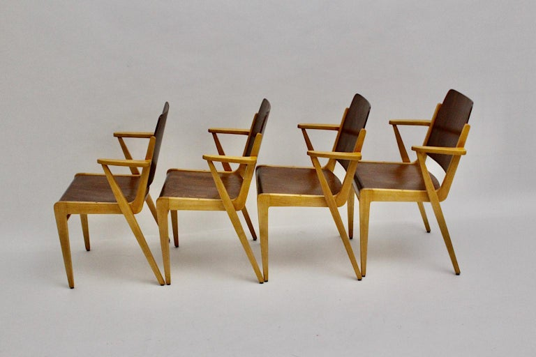 20th Century Mid-Century Modern 12 Vintage Bicolor Beech Dining Chairs Franz Schuster, 1959 For Sale