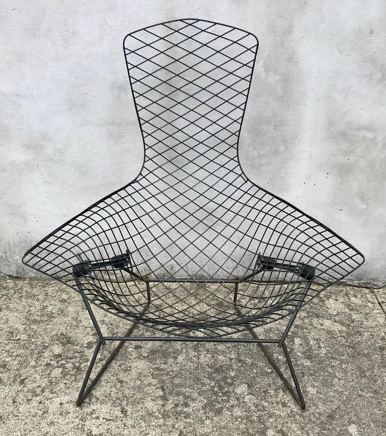American Mid-Century Modern Bird Chair in Black by Harry Bertoia for Knoll, Early 1950s For Sale