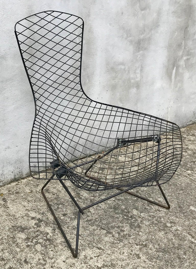 Painted Mid-Century Modern Bird Chair in Black by Harry Bertoia for Knoll, Early 1950s For Sale