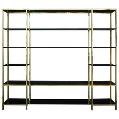 Mid-Century Modern Brass and Blacked Glass Bookshelf by Romeo Rega