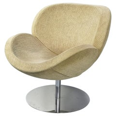Mid-Century Modern Chrome Swivel Egg Chair