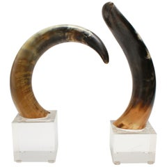 Mid-Century Modern Cow Horn Bookends on Acrylic Bases