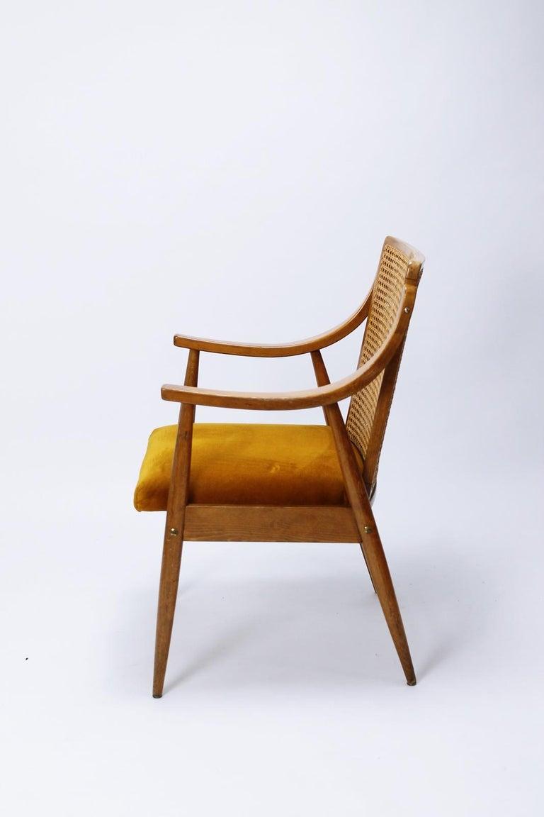 Mid-Century Modern Danish Style Cane Back Armchair 1960s ...