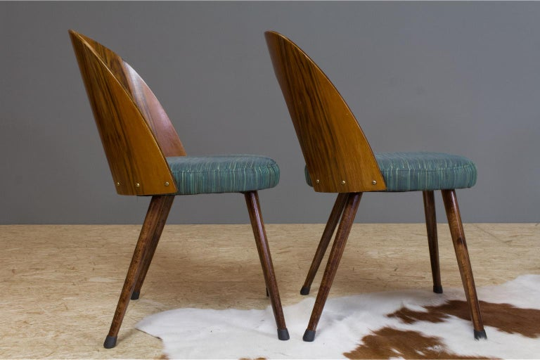 Mid-Century Modern Dining Chair Bent Plywood Back in by Antonin Šuman In Good Condition For Sale In Beek en Donk, NL