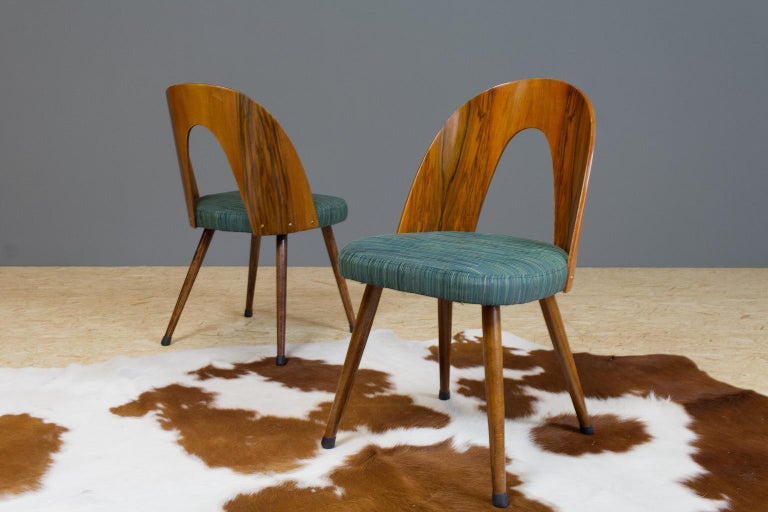 Mid-20th Century Mid-Century Modern Dining Chair Bent Plywood Back in by Antonin Šuman For Sale