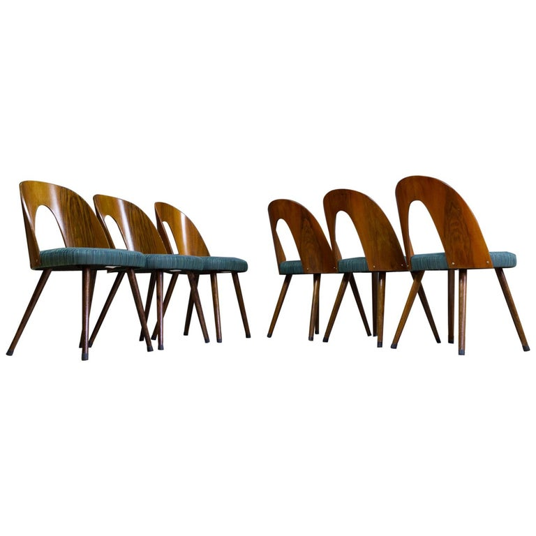 Mid-Century Modern Dining Chair Bent Plywood Back in by Antonin Šuman For Sale