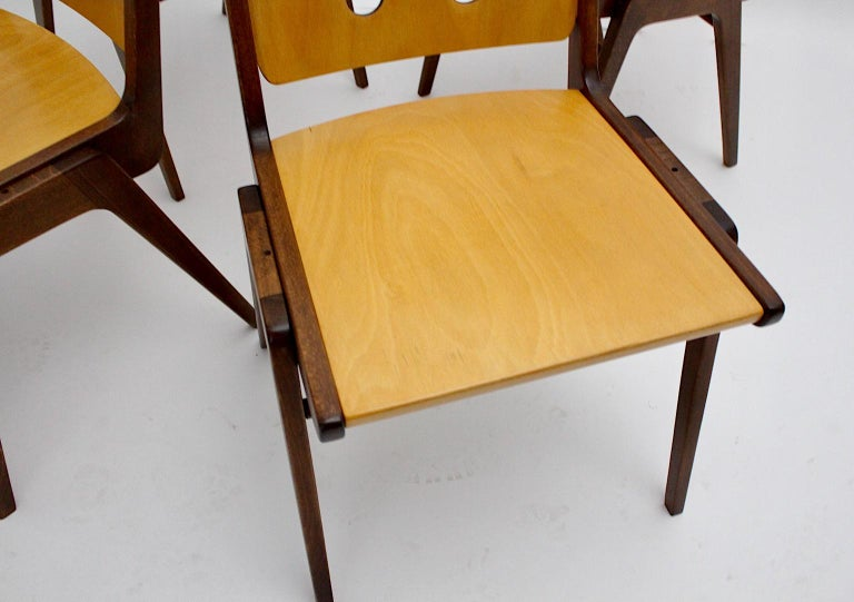 Mid-Century Modern Four Vintage Brown Bicolor Beech Dining Chairs Franz Schuster For Sale 9