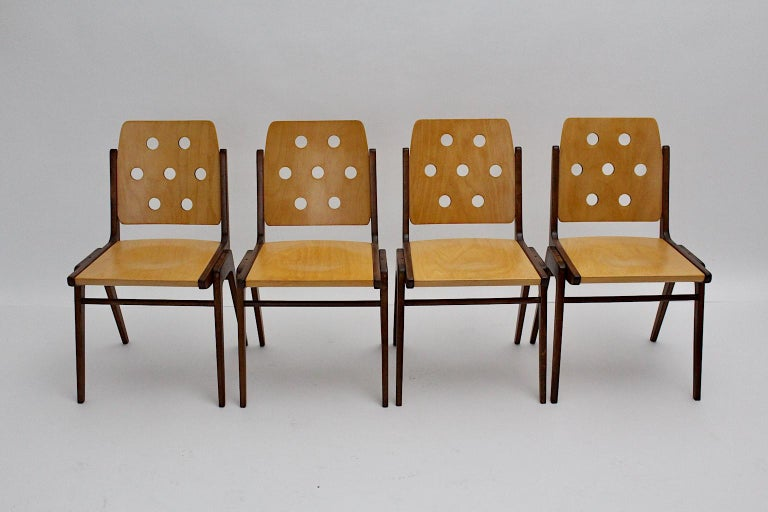 Mid-20th Century Mid-Century Modern Four Vintage Brown Bicolor Beech Dining Chairs Franz Schuster For Sale