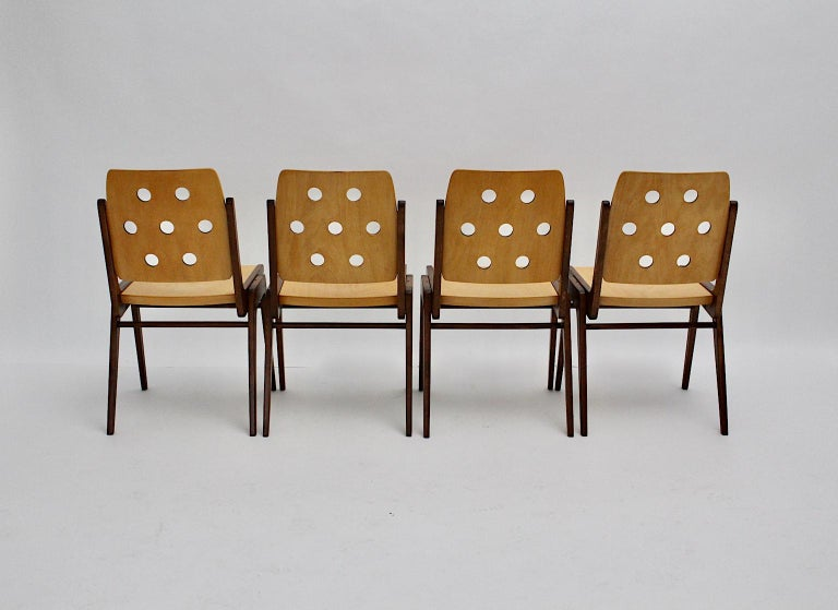 Mid-Century Modern Four Vintage Brown Bicolor Beech Dining Chairs Franz Schuster For Sale 1