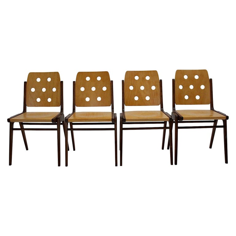 Mid-Century Modern Four Vintage Brown Bicolor Beech Dining Chairs Franz Schuster For Sale