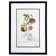 Mid-Century Modern Framed Salvador Dali Signed Drypoint Etching 1960s 31/200