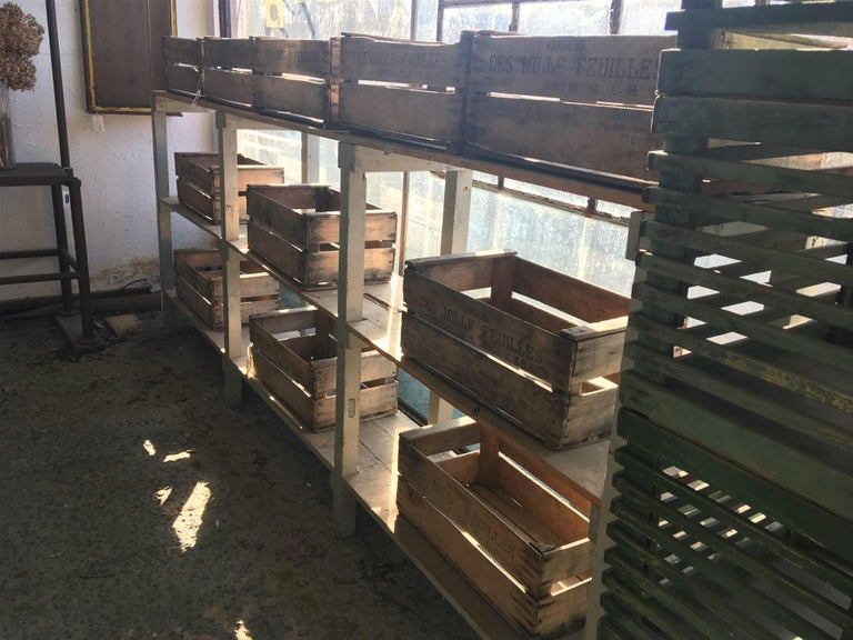 Mid-Century Modern Italian Pair of Spruce Painted Wood Industrial Shelving Units In Good Condition For Sale In Florence, IT