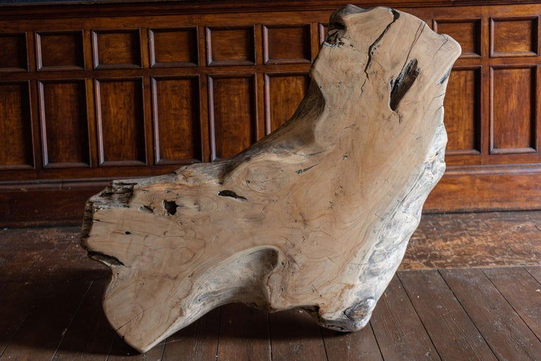 Mid-Century Modern Large Primitive Teak Root Coffee Table In Good Condition For Sale In Harrogate, GB