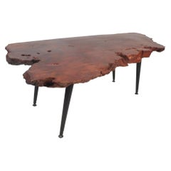 Mid-Century Modern Live Edge Tree Slab Coffee Table
