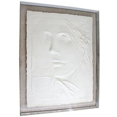 Mid-Century Modern Massive Acrylic Framed Cast Paper Sculpt, Signed Frank Gallo