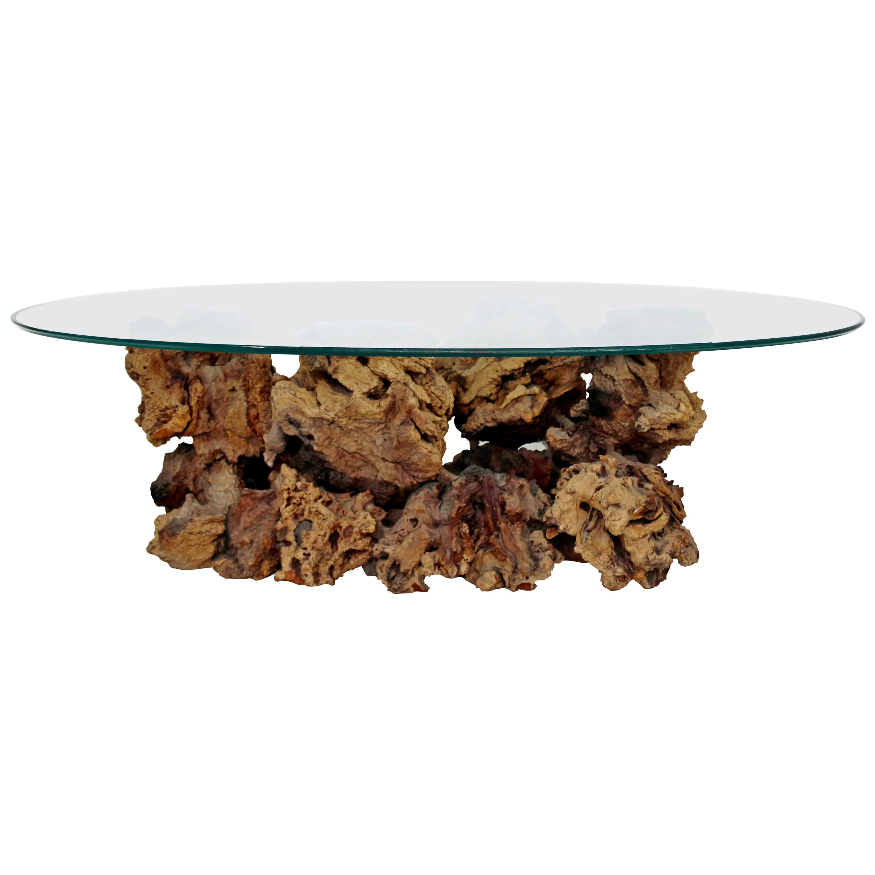 Charmant Mid Century Modern Sculptural Burl Wood Driftwood Tree Trunk Coffee Table,  1960s For Sale