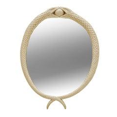 Mid-Century Modern Sculptural Snake Shape Acrylic Fiber Mirror, France 1960s
