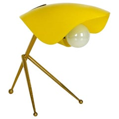 Mid-Century Modern Table Lamp with Acrylic Glass Lampshade, Brass Tripod Frame