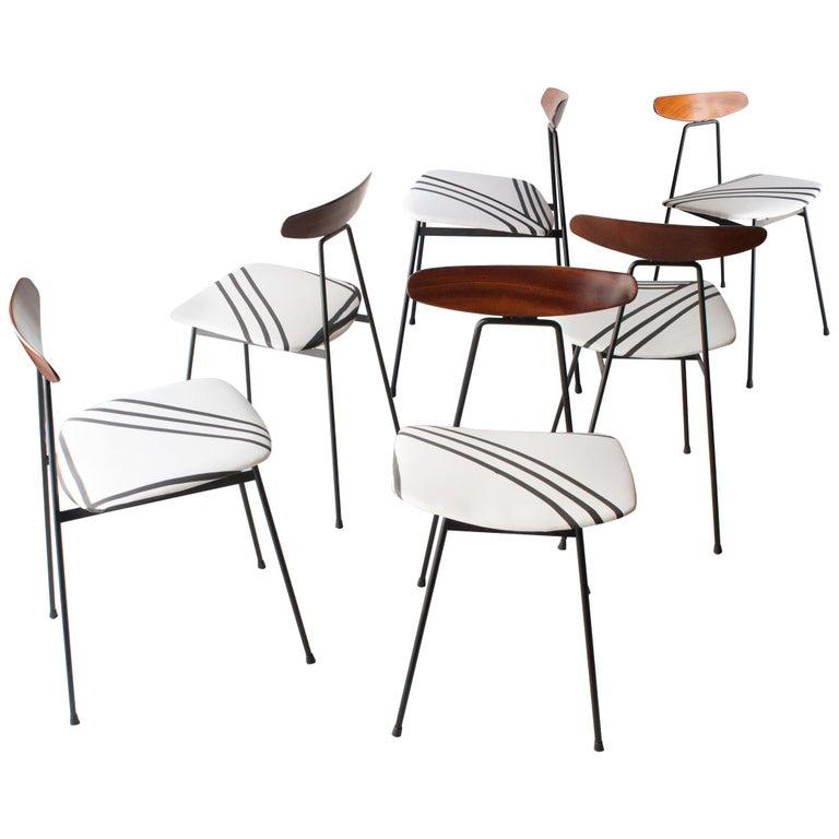 Mid-Century Modern Teak Iron White Black Set of Six Italian Chairs, 1950 For Sale