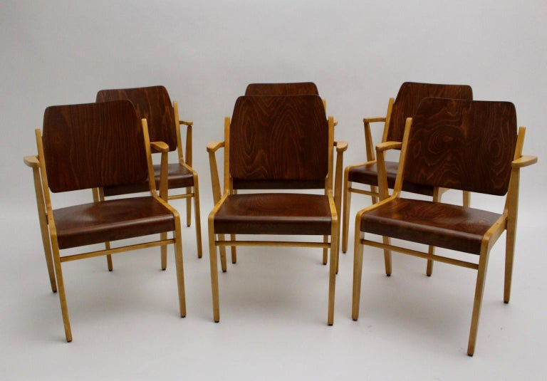 Austrian Mid-Century Modern Vintage Dining Room Chairs by Franz Schuster 1959 Set of Six For Sale