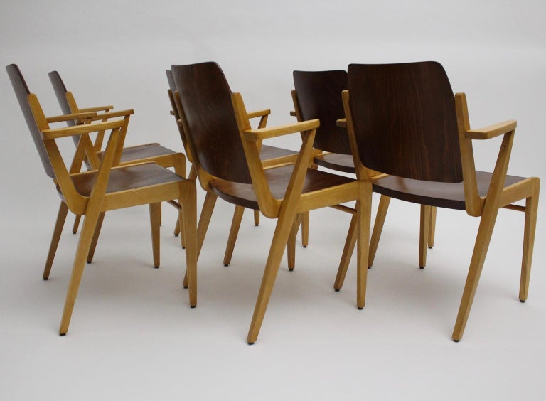 Mid-Century Modern Vintage Dining Room Chairs by Franz Schuster 1959 Set of Six In Good Condition For Sale In Vienna, AT