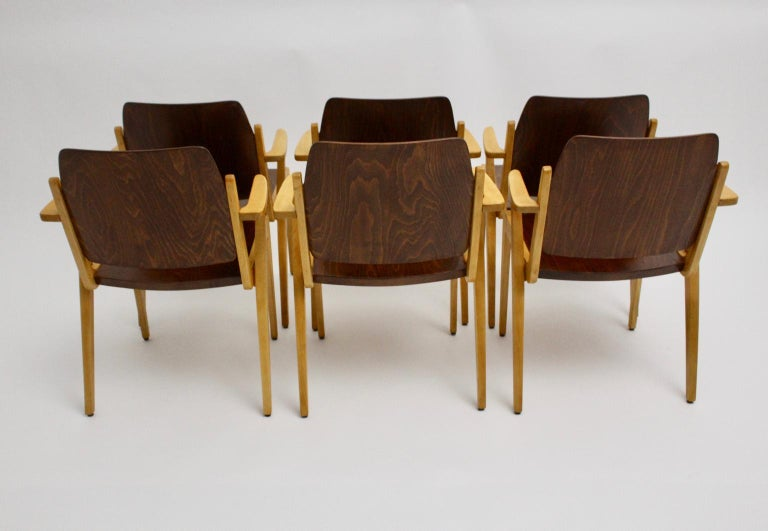 Mid-20th Century Mid-Century Modern Vintage Dining Room Chairs by Franz Schuster 1959 Set of Six For Sale