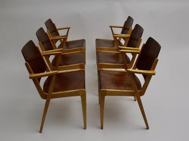 Beech Mid-Century Modern Vintage Dining Room Chairs by Franz Schuster 1959 Set of Six For Sale