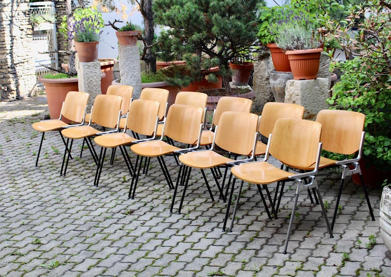 Mid-Century Modern Vintage Twelve Aluminum Beech Dining Chairs Giancarlo Piretti For Sale 5