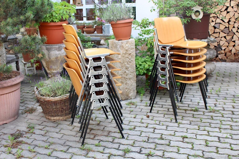 Mid-Century Modern Vintage Twelve Aluminum Beech Dining Chairs Giancarlo Piretti For Sale 9